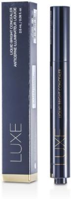 GloMinerals Luxe Liquid Bright Concealer Foundation