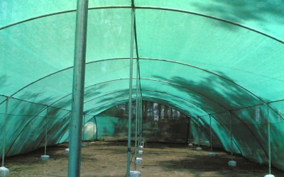 Sam Agro Green Shade Net 50% 15Sqm (3 X 5) Garden Tool Kit(1 Tools)