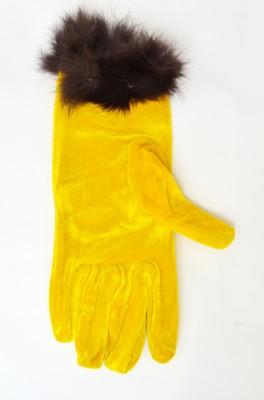 Welwear Solid Winter Women's Gloves
