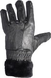 WCL Solid Protective Women's Gloves