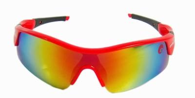 Omtex Zeal Cricket Goggles