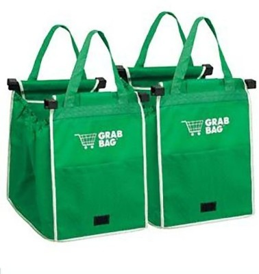 CPEX Pack of 2 Grocery Bags(Green)