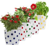 TrustBasket Set of 5 premium colourful D...