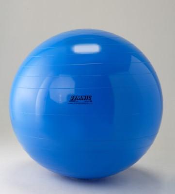 Gymnic 0410-004 65 cm Gym Ball