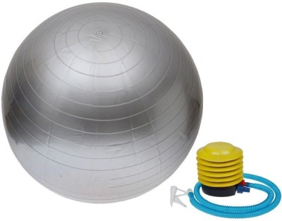 FIT24 FITNESS WS-65gym ball 65 cm Gym Ball(Grey)