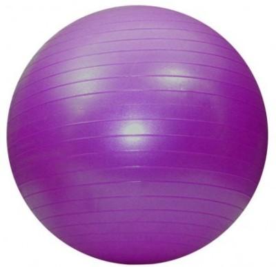 Aerofit AF9010 Gym Ball(Pack of 1, Purple)