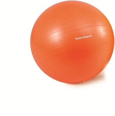 Sanctband pro55 55 cm Gym Ball