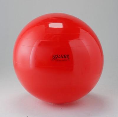 Gymnic 0410-003 55 cm Gym Ball