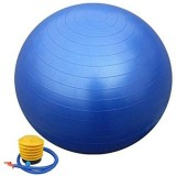 Vector X Gym Ball 65 cm Gym Ball (Blue)