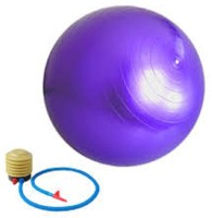 Dezire ANTI BURST 95 cm Gym Ball(PURPLE)