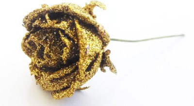 Trendy Nuts Golden Rose Hair Accessory Set