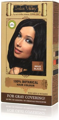 Indus Valley 100% Botanical One Time Use Hair Color