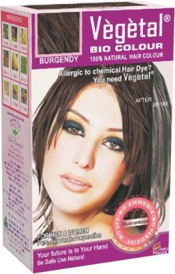 Vegetal Powder Hair Color