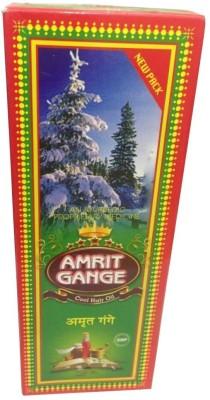 Warner Amrit Gange Hair Oil