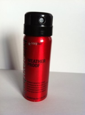 Sexy Hair Weather Proof Hair Styler