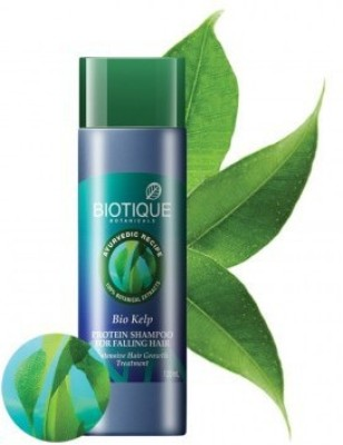 Biotique Hair Care Protein Cleaner Kelp Therapeutic