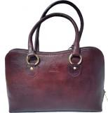 Pranjali Hand-held Bag (Brown)