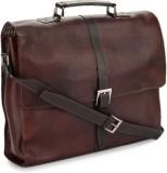 Tortoise Messenger Bag (Brown)