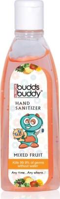Buddsbuddy - Mixed Fruit 100ML Hand Sanitizer(100 ml)