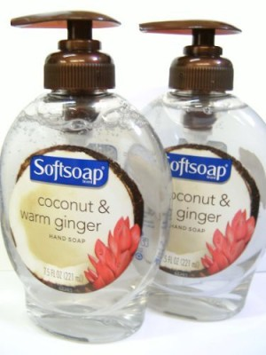 Softsoap soft soap coconut & warm ginger hand wash 2-pack