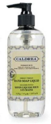 Caldrea liquid hand soap ginger pomelo