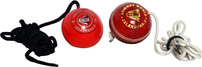 CW CW-704 Leather, Hard Plastic Hanging Ball for Cricket(Pack of 2)