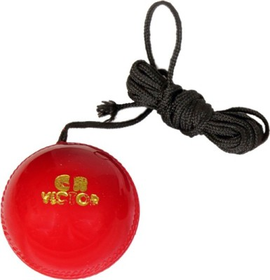 GB ball005 Hard Plastic Hanging Ball for Cricket(Pack of 1)