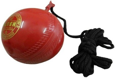 Flash 148 Hard Plastic Hanging Ball for Cricket(Pack of 1)