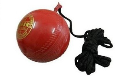 flash 446 Hard Plastic Hanging Ball for Cricket