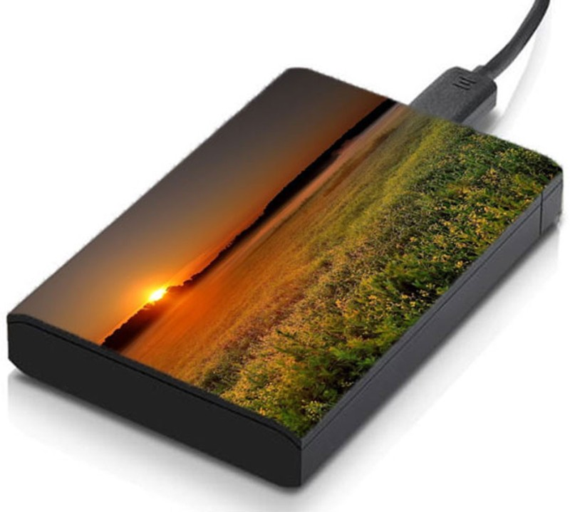meSleep HD29246 Hard Disk Skin(Multicolor)
