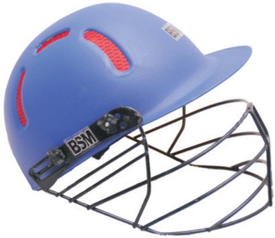 BUCHI SPORTS ELLITE Cricket Helmet - L(SKY BLUE)