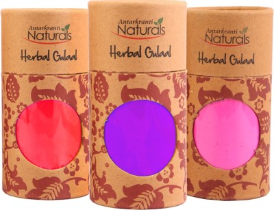 Antarkranti PRM 231 Holi Color Powder Pack of 3