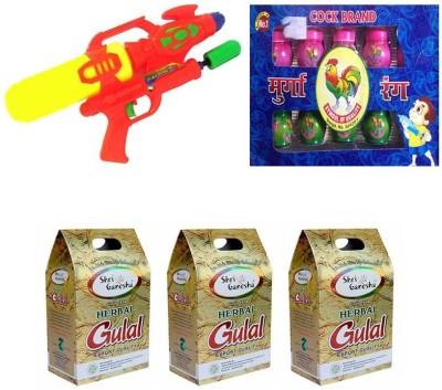 sai baba creations Pichkari, Color Holi Combo