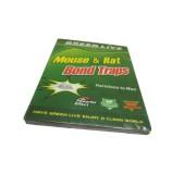 DCS Green Live Mouse & Rat Bond Traps (3...