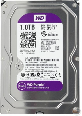 WD Purple 1 TB DVR / NVR Internal Hard Drive (WD10PURX-64E5Y0)