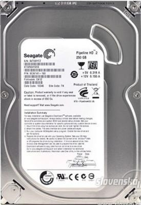 ST3250412CS 250GB