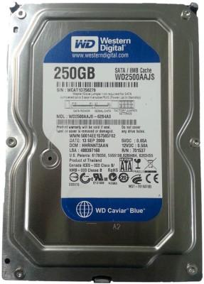 WD Caviar 250 GB DVR, NVR, Desktop Internal Hard Drive (WD2500AAKX)