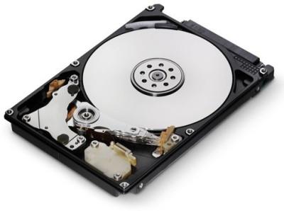 HGST Travelstar 500 GB Desktop Internal Hard Drive (0J26005)