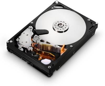 HGST Enterprise 2TB Server, NAS, DVR Internal Hard Drive (0F14685)