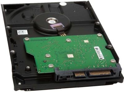 WD Green Power 160 GB Desktop Internal Hard Drive (WD1600AVVS1)