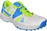 Sega CORNADO Cricket Shoes (White, Green...