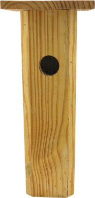 birdhousebuilder NB002 Bird House(Wall Mounting, Tree Mounting)