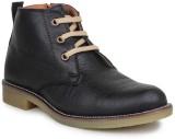 Digni BOOTS Boots (Black)