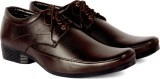 Sam Stefy Lace Up (Brown)
