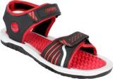 Earton Men Red Sandals