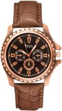 VESPL VW1005 Analog Watch  - For Men