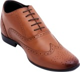 Celby Lace Up (Brown)