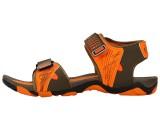 Exotic Men Brown Sports Sandals