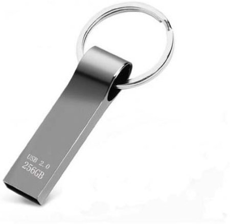 View i-Care M 256 GB Pen Drive(Silver)  Price Online