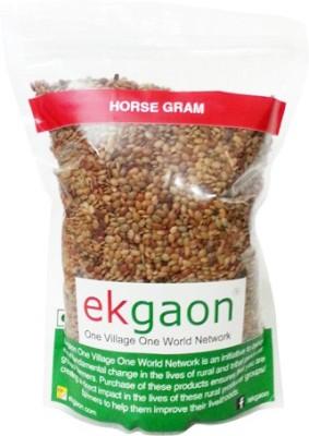 ekgaon(1)